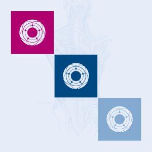 FJV Branding